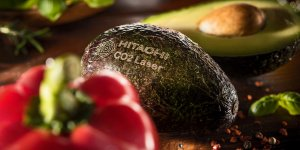 Avocado - Hitachi Lm-C310 - Laser Co2_Copia